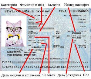 нужна ли виза в израиль для россиян